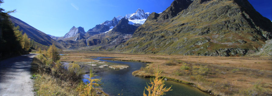Camping Aiguille Noire - panorama